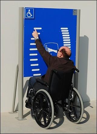 Plac zabaw Tablica z drabinkami - wersja dla osób na wózkach Play Park